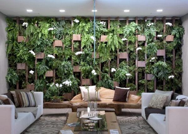 jardim vertical na sala : jardim vertical na sala:jardim vertical 1